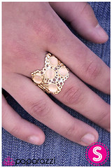 740_ring-goldkit1june-box020