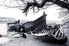 (Marc Le Port) Tags: blackandwhite mer boat blackwhite brittany noiretblanc pentax sigma bretagne bateaux nb morbihan wrecks k3 noireetblanc paves lebono marcleport