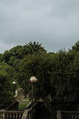 Esperando oscuridad (martinnarrua) Tags: park parque trees storm argentina clouds stairs nikon darkness cloudy nubes tormenta amateur nikond3100