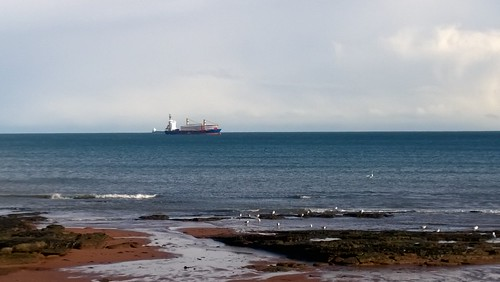 General cargo vessel BBC Anglia in Tor Bay from Hollicombe Beach