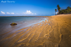 Low Tide Art (NorthN) Tags: beach canon puerto golden sand paradise tide rico tropical caribbean playas 6d