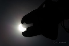Cause of solar eclipse (dziurek) Tags: light sky cloud sun sunlight colour lamp silhouette horizontal solar eclipse day dinosaur stadium air poland sunny nobody science formation equipment half daytime block occult cloudscape partial occultation partially