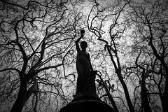 La fuente del Deseo (Dani_vr) Tags: trees blackandwhite bw espaa art byn blancoynegro nature spain corua rboles arte escultura galicia bianconero diosa blancnoir