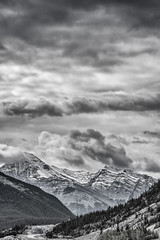 DSC_2157a-EditFAA (john.cote58) Tags: road camping trees sky blackandwhite bw snow canada mountains nature monochrome rock stone pine clouds forest landscape outside outdoors grey highway hiking gray scenic overcast monotone climbing alberta rockymountains lakelouise range banffnationalpark icefieldsparkway tonalrange