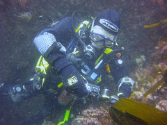 19 July 2016 - Scillies Trip PICT0240 (severnsidesubaqua) Tags: scillies scilly scuba diving
