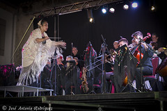 "Veranos de La Adrada 2016 • <a style=""font-size:0.8em;"" href=""http://www.flickr.com/photos/133275046@N07/28090419614/"" target=""_blank"">View on Flickr</a>"