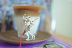 Dancing cat & Iced caff latte (Iyhon Chiu) Tags: coffee cat dancing latte  caff