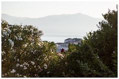 Jutro (roksoslav) Tags: morning 50mm nikon croatia nikkor dalmatia 2016 bra postira jutro d7000