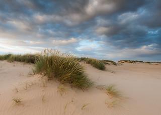 Dunes - Wells-next-the-sea, Norfolk