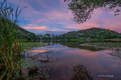 _DSC8856acprt (TreeRose Photography) Tags: reeds cattails water reflections granitebasinlake prescott arizona sunset clouds sky landscape trees lilypads plants hills mountains