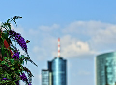 Vertical I (StockQuant) Tags: none rokkor 50mmf17 sonyalpha6000 frankfurt germany skyline architecture skyscraper
