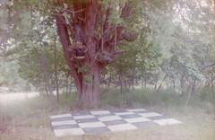 (Isabeau van S) Tags: photography kodak retina film analog color garden extraordinary nature