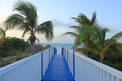 Playa Pilar (Evafdp) Tags: cuba playa pilar cayo guillermo caribe caribbean sea mar key bridge puente pasarela azul blue palm trees palmeras
