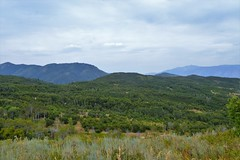 (calemarie137) Tags: ogden utah field mountains landscape snow basin summer huntsville