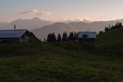 Alp Muota (balu51) Tags: wanderung abend dmmerung landschaft berge alp graubnden surselva september 2016 copyrightbybalu51