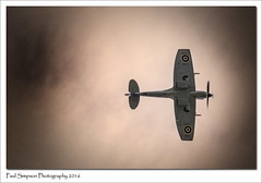 Spitfire TE311 above (Paul Simpson Photography) Tags: bbmf september2016 sky spitfire spitfirete311 wwii sonya77 imageof imagesof paulsimpsonphotography photoof photosof plane aeroplane aircraft lincolnshire fighter flying flight planesinflight intheair raf flyinglegends