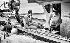 The Swordfish - Gallipoli (davide978) Tags: davide978 davidecolli davidecolliphotography puglia italy italia barca boat peschereccio spada pesce mg6263 fish swordfish canon ef 35mm f2 is usm canonef35mmf2isusm