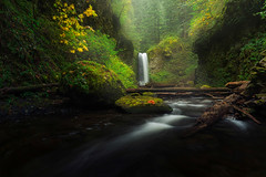 Autumn at Weisendanger (Ben_Coffman) Tags: red bencoffman bencoffmanphotography waterfall columbiarivergorge oregon pacificnorthwest landscape mist fog multnomahcreek autumn fall