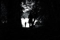 La fort en contre-jour (OMM.photographie) Tags: arbre fort nb noirblanc noiretblanc bw blackwhite blackandwhite extrieur outside outdoor canon canon5d canon5dmarkiv 5d eos forest tree people