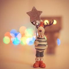 Karcsony (verseskonyv) Tags: amaznli dof elch moose weihnachten xmasmoose bokeh danbo danboard xmas amaznli