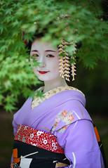 Maiko20161017_03_15 (kyoto flower) Tags: tanan fukuno kyoto maiko 20161017     gaap