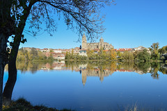 Salamanca river reflection (Pamela Sia) Tags: cathedral river salamanca spain tree trees waterreflection water cityscape ancientcity