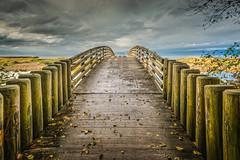 Somewhere New (Wayne Stadler Photography) Tags: photomatix
