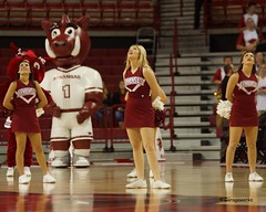 University of Arkansas Basketball vs South Dakota State (Garagewerks) Tags: woman college basketball sport female university all state south sigma arkansas vs cheer cheerleader dakota razorbacks