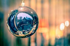Christmas Ball Reflection (SamuelR81) Tags: christmas color reflection colors dof bokeh 50mm18 christmasball 50mmf18 d600 nikon50mmf18 nikon50mm18 nikond600