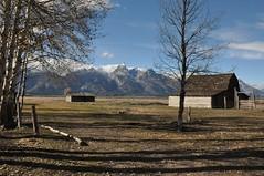 John Moulton Homestead, Mormon Row Historic District, Wyoming DSC_6238 (NDomer73) Tags: shadow october scenic tetons 2014 grandtetonnationalpark mormonrow 21october2014 dfpcweek3 dfpc3