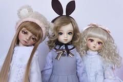 Mini Doll Meet (Muri Muri (Aridea)) Tags: f16 bjd dollfie volks abjd fcs msd f19 toppi