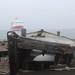 Whaler's Bay_8168