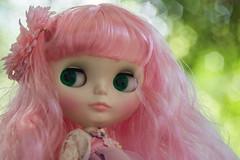 (guilherme purin) Tags: art fleur fleurs de toy doll charlotte radiance des blythe takara cwc rbl toyart