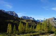 DSC03399 (***Images***) Tags: mountain alps tree landscape austria tirol sterreich alpen karwendel copypaste greatphotographers gnneniyisithebestofday saariysqualitypictures natureandpeopleinnature