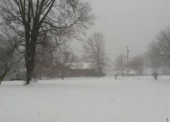 Tennessee Snow 2 (Lisa Zins) Tags: snow tn tennessee thor snowday myfrontyard mtjuliettn samsunggalaxy lisazins