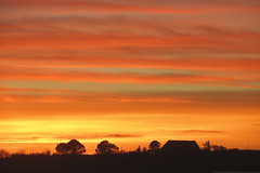 Sunset 1 of 215 (linlaw39) Tags: sunset red sky orange yellow scotland countryside aberdeenshire fraserburgh 2015 january4 project215 canonpowershotsx260hs image1215 2152015 jan2015 04012015 215in2015
