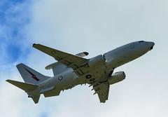 RAAF E-7A Wedgetail-1818 (Craig Hall Photography) Tags: aircraft aviation military jets planes boeing airforce raaf radar wedgetail aewc e7a