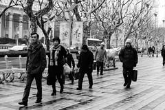 DSC_0134 (tamas.doczi) Tags: china nikon shanghai jingan   d3200