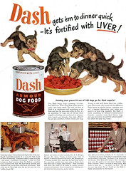 Dash (dok1) Tags: 1948 dogs dogfood saturdayeveningpost dok1