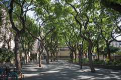 Barcelona (Oleg.A) Tags: barcelona spain catalonia catalunya