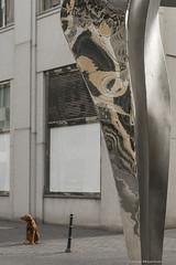 not looking at the sculpture (sleepfoto) Tags: street city urban dog reflection berlin potsdamerplatz
