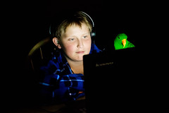 :: boy and his bird :: (mjcollins photography) Tags: light boy playing bird night computer little low young parrot eclectus
