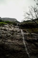 DSC_000 (55) (Praveen Ramavath) Tags: matsyapurana agnipurana skandapurana harishchandragad kalachuridynasty 6thcenturyad khireshwar harishchandreshwar temple kedareshwar shaiva shakta naath shiva siva cave pillars four konkankada konkan cliff ganapathi