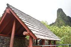 DSC_5378 (meganewens) Tags: maui iao needle sunset kaanapali lahaina hawaii digital black white waterfall