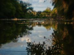 San Gabriel River (Anne Worner) Tags: trees sunset painterly blur texture water lensbaby reflections evening still soft quiet sundown bokeh peaceful olympus georgetown layers goldenhour sangabrielriver ononesoftware doubleglass eln anneworner texturebyeln