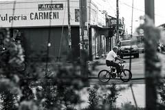 Cycling leon (minorninth9) Tags: nicaragua fatherhood len fotografa biker streetphotography love bw grandfather cycling blackandwhite