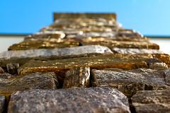 Stone wall to the sky, HMM (Wenninger Johannes) Tags: macrotextures flickrphotowalk macromondays macro macrophoto macrophotography makro makrofoto makrofotografie photo photography foto fotografie linz austria sterreich