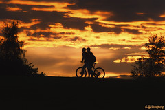 Sunset Cyclists (whistlingtent) Tags: silhouette cyclists cloudscape angel north gateshead trees landscape skyscape lighting backlit people bicycle photography