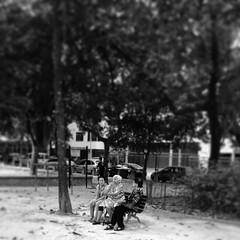 Conversas / Talks (Pablo Grilo) Tags: fotografiapb fotografiaempb fotoempretoebranco fotopretoebranco fotoempb fotopb fotografiaempretoebranco fotografiapretoebranco blackandwhitephotography bwphotography bwphoto blackandwhitephoto pretoebranco pb bw noir blackandwhite fotografosderua fotografiaderua fotoderua streetphotographers streetphotography streetphoto banco praca square bench oldies oldpeople idosas velhas velhos idosos bairropeixoto copacabana iphone6
