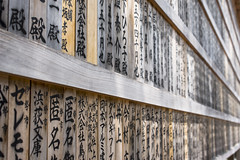 sponsor line (Cary Strachan) Tags:      japan ise outside traditional shrine temple wood decorative text